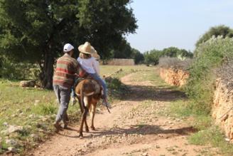 Balade avec les ânes en pays berbère